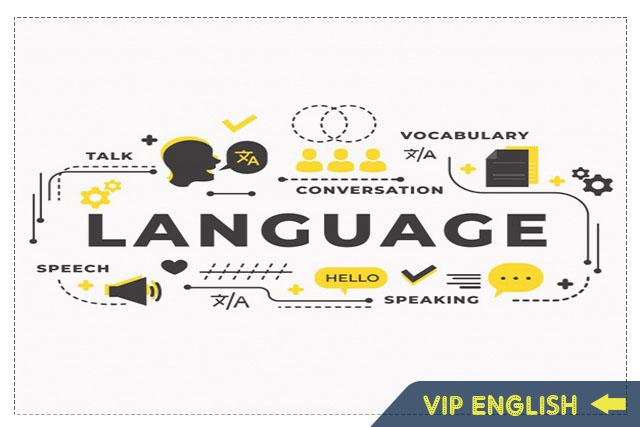 8 bí quyết tự học từ vựng tiếng Anh hiệu quả và dễ nhớ